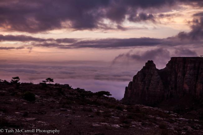 sunrise with the mist
