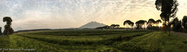 Sunrise over Sabiyano Volcano